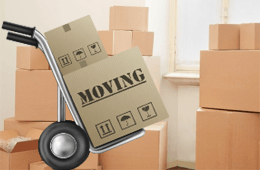 Exclusive Movers pty ltd