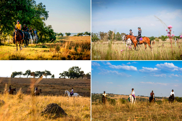 Horse Riding Trails & Outrides